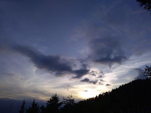 天空の森3.jpg