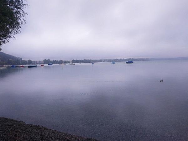 雨の湖1.jpg